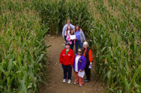 Several children and volunteers are seen from above as they walk down a path in the corn maze